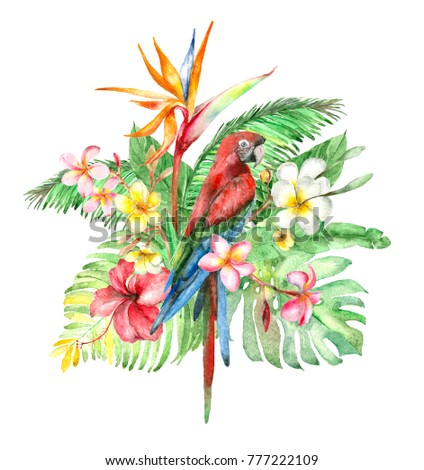Watercolor bouquet with tropical bird parrot, palm leaves, plumeria and hibiscus, strelitzia flowers isolated on white.