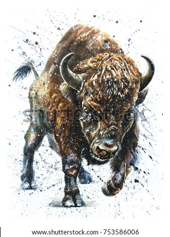 watercolor, buffalo, bison, animal, background, isolated, wild, illustration, nature, white, art, wildlife, animals, hand, texture, bull, exotic, tattoo, paint, mammal, west, painting, black, american