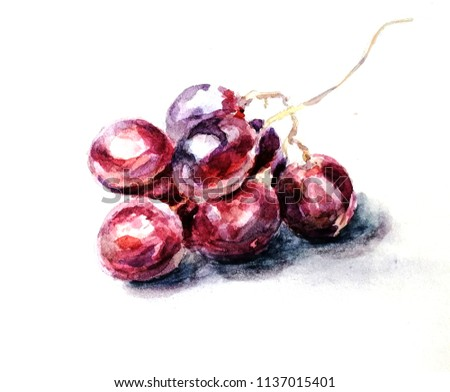 Watercolor bunch of grapes
