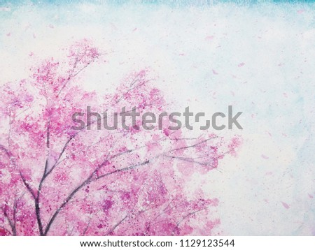 Stock Photo watercolor cherry blossoms flower  sakura petals floating in the wind with blue sky.