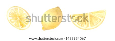 Watercolor clip art set of hand painted lemon slices on white background.