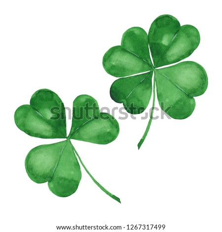 Watercolor clover. Green four leaf clover isolated on white
