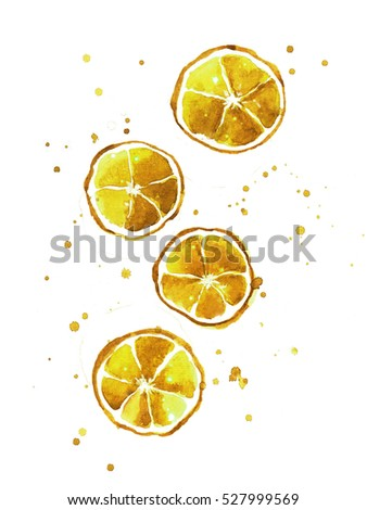 Watercolor cocktail illustration.lemon for menu, card, postcard,banner,poster.Watercolor painting hand drawn illustration.Lemon sketch fruit isolated on white background with splash.Lemon juicy sketch