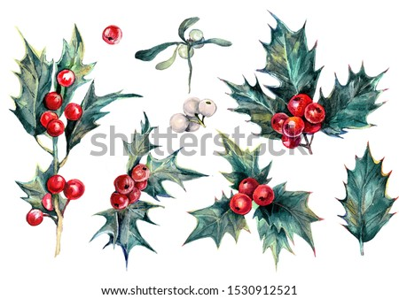 Watercolor Collection of Drawn Holly Plant Isolated on White. Christmas Evergreen Tree with Red Berries and Green Glossy Leaves. Winter Festive Natural Decoration. Botanical Illustration of Holly.