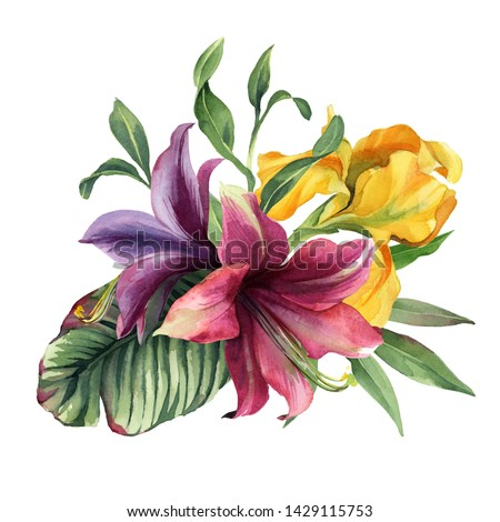 watercolor colorful bouquet with iris flower and tropical flower and leaves isolted on white background for card. Stock photo ©