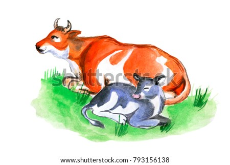 Watercolor cow and cute calf on grass