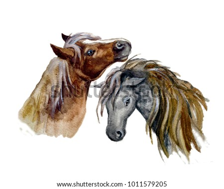 Watercolor cute horse on the white background