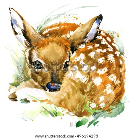 watercolor deer illustration....