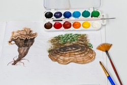 Watercolor drawing of truffle mushroom. Learning of dendrology and botany. Colorful watercolor picture. Top view