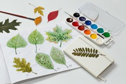 Watercolor drawings of leaves. Picture of leaf diseases. Study of dendrology. Top view