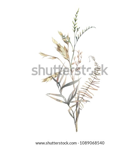 Watercolor dry herbs bouquet. Hand painted botanical composition: plants, grass, berries, fern, leaves. Natural object isolated on white background