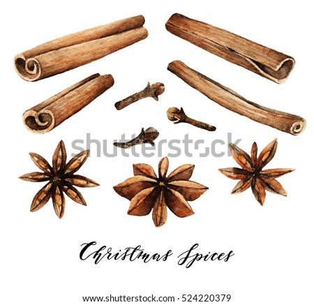 Watercolor elements. Christmas spices, cinnamon, star anise, cloves, handmade