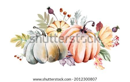 Watercolor fall pumpkin harvest clipart. Thanksgiving pumpkin illustration, Harvest festival invitation, farmhouse clipart, gardening tools and plants, hello autumn logo