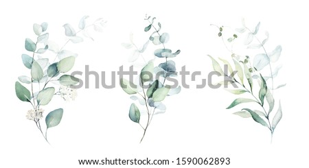 Watercolor floral illustration set - green leaf branches collection, for wedding stationary, greetings, wallpapers, fashion, background. Eucalyptus, olive, green leaves, etc. Сток-фото ©