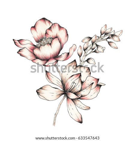 Watercolor Flower Illustration