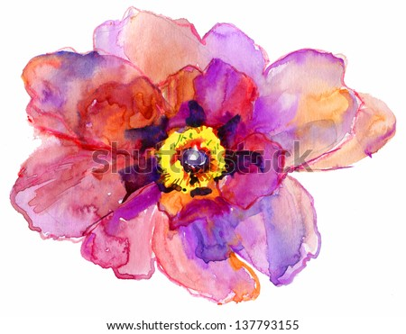 Watercolor flower peony.