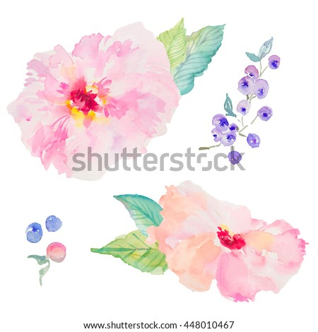 Watercolor Flowers and Berries. Pink Watercolor Flowers. Watercolor Blueberries. Hand Painted Flowers