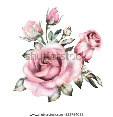 watercolor flowers. floral illustration in Pastel colors, pink rose. branch of flowers isolated on white background. Leaf and buds. Cute composition for wedding, bouquet for greeting card