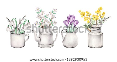 Watercolor flowers in vase.Jug, can, mug, kettle with crocus,willow,snowdrop,mimosa,blooming apple branch.Composition with early spring flowers.Spring time