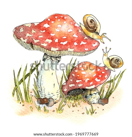 Watercolor fly agaric and snails illustration Stock fotó ©
