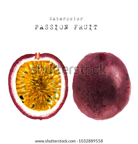 watercolor fresh slice cut passion fruits. Hand drawn sketch watercolour painting on white background. illustration of Set organic food diet passionfruit.