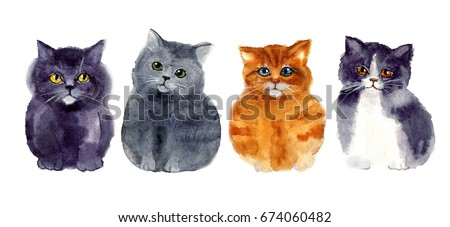 Watercolor funny sketch cats. art illustrations sketch.  illustration, isolation objects for your design