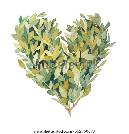 Watercolor greenery heart. Hand drawn floral illustration isolated on white background. Natural graphic label concept: heart silhouette consist of leaves and branches