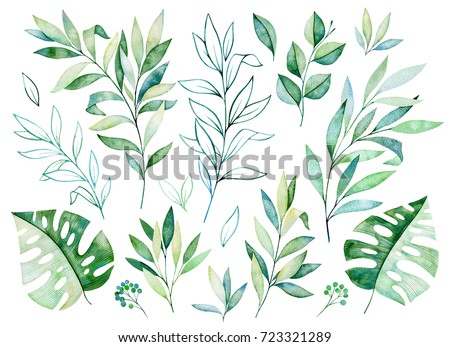 Watercolor greens collection.Texture with greens,branch,leaves,tropical leaves,foliage.Perfect for wedding,invitations,greeting cards,quotes,pattern,bouquet,logos,Birthday cards,your unique create etc