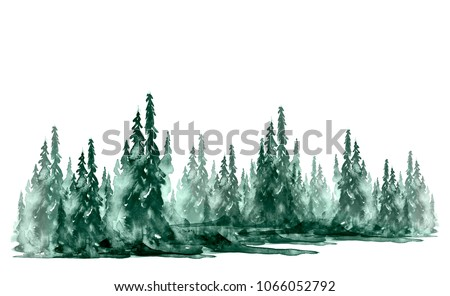 Watercolor group of trees - fir, pine, cedar, fir-tree. green forest, landscape, forest landscape. Drawing on white isolated background. Ecological poster.
