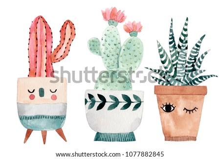 Watercolor hand-drawn illustration with cactus and succulents. Green house plants illustrations. Cute pots for plants.
