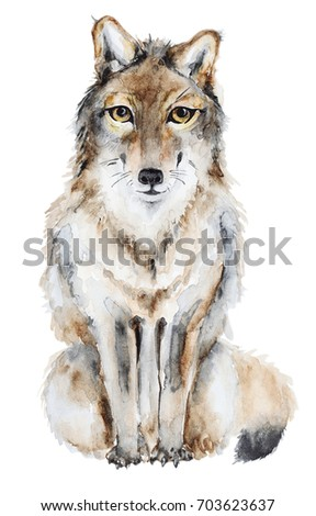 Watercolor hand drawn wolf isolated on white. Watercolor painting, animal illustration. #703623637