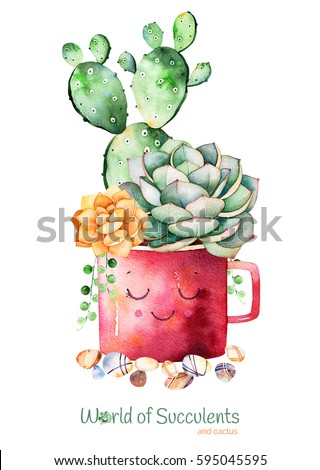Watercolor handpainted succulent plant and cactus in pot and pebble stones.Watercolor clipart,individual flower pot isolated on white background.Perfect for your project,cover,wallpaper,logo,wedding