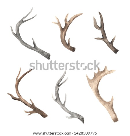Watercolor head deer in rustic bohemian style. Boho chic hand painted clipart isolated on white perfect for wedding and print design projects Foto stock ©