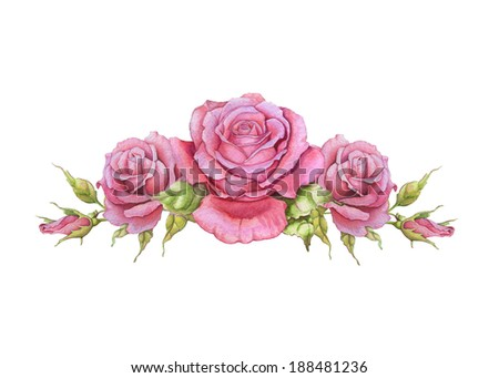 Watercolor horizontal vignette of roses on a white background