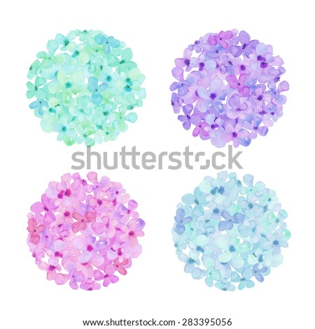 Watercolor Hydrangea Flower Ball. Watercolor Hydrangea Balls. Purple Hydrangeas. Watercolour Hydrangeas