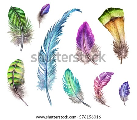 watercolor illustration, colorful boho feather collection, easter clip art set, tribal assorted design elements, isolated on white background