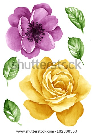 watercolor illustration flower and leaves in simple background