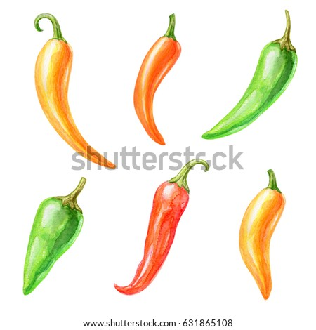 watercolor illustration, Mexican chili pepper clip art, ethnic isolated objects set, food, design elements