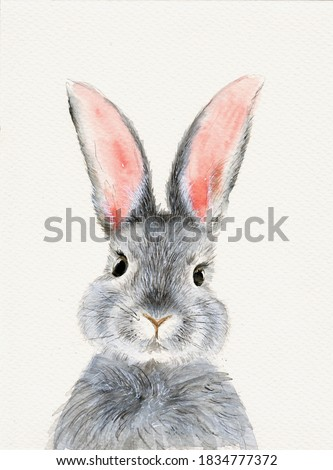 Watercolor illustration of a cute fluffy grey rabbit with pink ears in a blank background