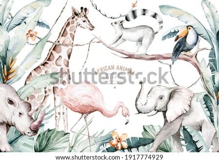 Watercolor illustration of African Animals: lemur, flamingo and giraffe, toucan and rhipo, rhino and elephant isolated white background. Safari savannah animals.