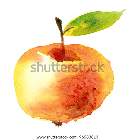 Watercolor illustration of apple
