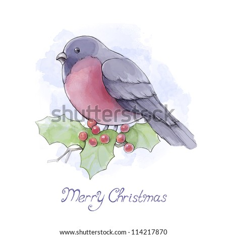 Watercolor illustration of bullfinch. Christmas greeting card