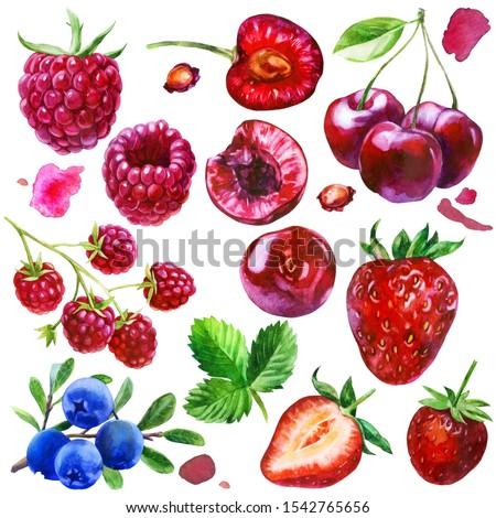 Watercolor illustration, set. Raspberries, raspberries on a branch, strawberries, cherry berries, cherry bone, cherry berries on a branch, blueberries on a branch, pink spots