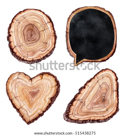 watercolor illustration, tree, wood slice, nature clip art elements, isolated on white background