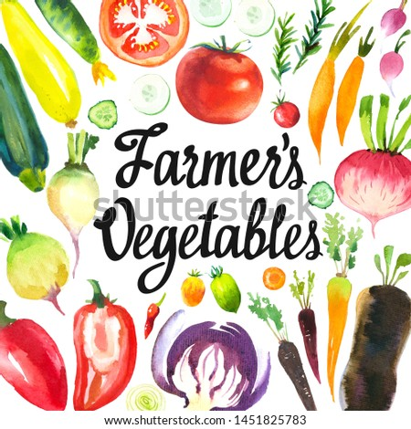 Watercolor illustration with farm products. Vegetables set: artichokes, onions, shallots, leeks, peppers, cabbage, beets, carrots, cucumber, zucchini, turnip, radish. Fresh organic food. #1451825783