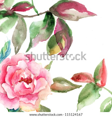 Watercolor illustration with Rose flower with green leaves