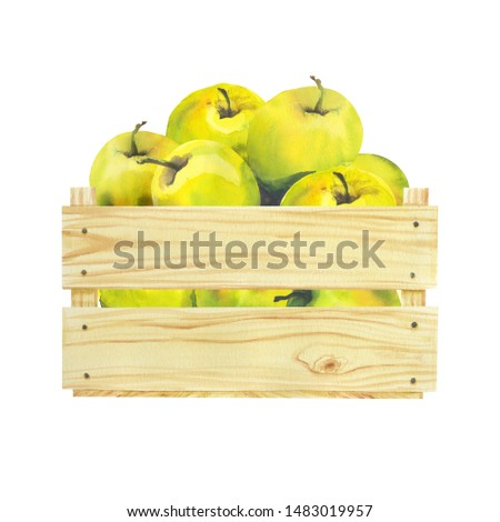 Watercolor illustration with wooden crate with riped fruits, apples. Harvest crop. Could be used for menu, farm markets, banner, prints.
