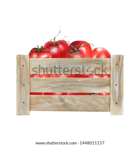 Watercolor illustration with wooden crate with riped vegetables. Harvest crop. Could be used for menu, farm markets, banner, prints.