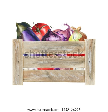 Watercolor illustration with wooden crate with riped vegetables. Harvest crop. Could be used for menu, farm markets, banner, prints