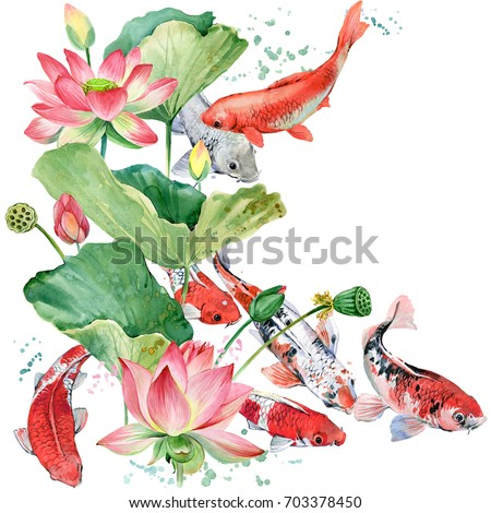 watercolor koi carp and lotus...